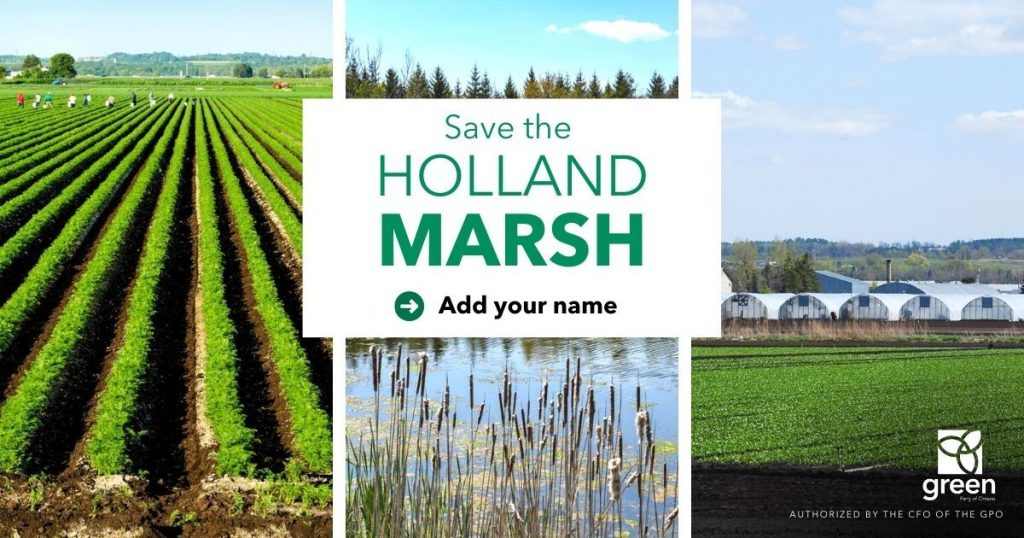 This image has an empty alt attribute; its file name is gpo-protect-holland-marsh-1200x630-1-1024x538.jpg